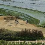 Ciclistas descansando cerca del faro de Chassiron. Isla de Oleron. Francia