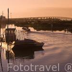 Embarcaciones planas de aluminio para transportar las ostras en el canal de ORS. Isla de Oleron. Francia