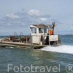 Lancha rapida plana hecha de aluminio especial para trabajar con las ostras. Isla de Oleron. Francia