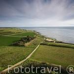 Verdes campos y extensas playas se extienden por el norte de la isla de Oleron. Francia