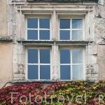 Ventana de una vivienda. Pueblo del s.XVI - XVII de Castelnau de Montmiral. Tarn. Francia