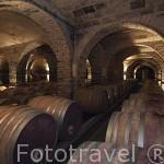 Bodega de vino del Chateau de Saurs. Cerca de Lisle sur Tarn. Tarn. Francia