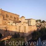 Abadia de la poblacion de Gaillac (Galhac en occitano). Junto al rio Tarn. Francia