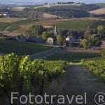 Campos de viñedos y cultivos cerca de Gaillac. Tarn. Francia