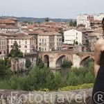 Jardines y mirador en el palacio de la Berbie o del Obispo. Ciudad de Albi. Tarn. Francia