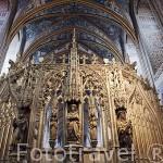 Estatua de Simeon. Catedral de Sainte Cecile. Patrimonio de la Humanidad, UNESCO. Ciudad de Albi. Tarn. Francia