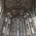 Detalle de la fachada exterior. Catedral de Sainte Cecile. Patrimonio de la Humanidad, UNESCO. Ciudad de Albi. Tarn. Francia