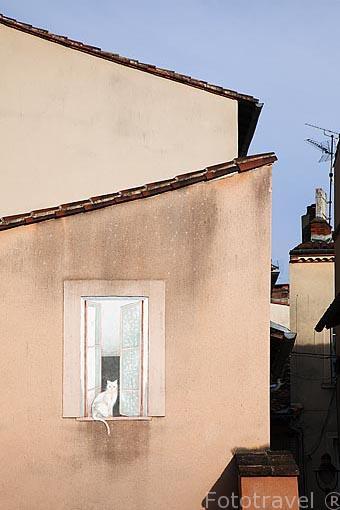 Calle y fachada con un trapantojo. Ciudad de Albi. Tarn. Francia