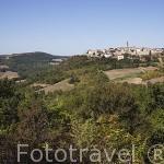 Pueblo medieval de Puycelsi. Tarn. Francia