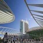 Modernos edificios en el parque de las Naciones junto a la estacion de Oriente diseñada por Santiago Calatrava. Ciudad de LISBOA. Portugal