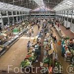 Mercado da Ribeira. LISBOA. Portugal