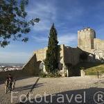 Castillo de Pamela, vista desde la zona amurallada. PALMELA. Portugal