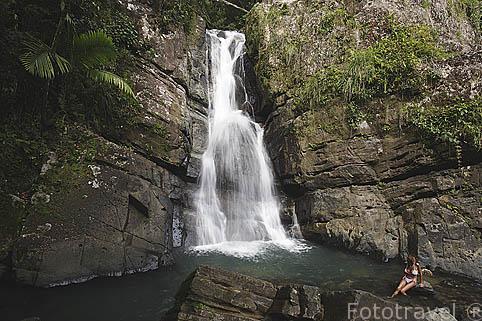 """Cascada """"La Mina"""". Parque nacional El Yunque. Noreste de PUERTO RICO"""