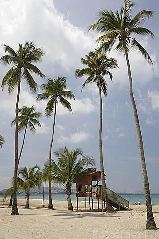 La playa de LUQUILLO. Al Noreste de Puerto Rico