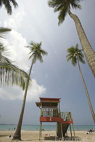 La playa de LUQUILLO, caseta de vigilantes y palmeras. Al Noreste de Puerto Rico