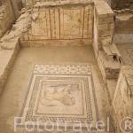 Interior de los Palacios de la Cuesta, viviendas de los ricos con bellas decoraciones mitologicas en sus paredes, situadas frente a la calle de Curetes. Ruinas de EFESO / EPHESUS. Egeo. Turquia
