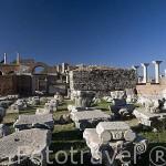 Patio de la Basilica bizantina, s.VI d.C. Cerca de las ruinas de EFESO / EPHESUS. Egeo. Turquia