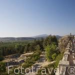 Vistas del valle desde la Basilica bizantina, s.VI d.C. Cerca de las ruinas de EFESO / EPHESUS. Egeo. Turquia