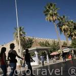 Calle del Mercado o Karavanserai con tiendas y terrazas. Ciudad de KUSADASI o Isla de los Pajaros. Mar Egeo.Turquia