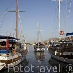 """Barcos llamados """"Caiques"""" anclados junto al paseo maritimo. Ciudad de BODRUM, antigua Halicarnaso. Costa del mar Egeo. Turquia"""