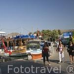 Paseo maritimo de la ciudad de BODRUM, antigua Halicarnaso. Costa del mar Egeo. Turquia
