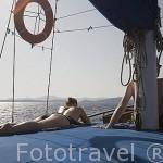 Paseo en barco turistico llamados Caiquen. Con salida diaria desde BODRUM, antigua Halicarnaso. Costa del mar Egeo. Turquia
