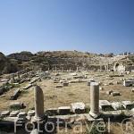 Ruinas de AFRODISIAS / APHRODISIAS, en el monte de Baba Dagi. Egeo. Turquia
