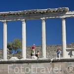 Columnas templo de Trajano con columnas corintias. Ruinas de Pergamo en lo alto de la colina. PERGAMO / BERGAMA. Egeo. Turquia.