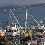 Barcos pesqueros en el puerto de KUSADASI. Mar Egeo.Turquia