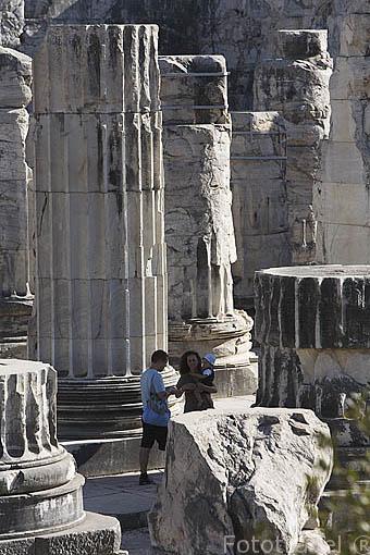 Ruinas del templo de Apolo, s. IV d.C. con columnas de 22 mts de altura. Ruinas de DIDIMA. Costa del mar Egeo. Turquia
