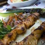 Brochetas de cordero, vacuno son habituales en los restaurantes turcos. TURQUIA