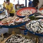Venta de pescado fresco. Mercado del puerto. Ciudad de ANTALYA. Provincia de Antalya. Turquia