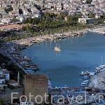 Vista de la ciudad de ALANYA, su puerto pesquero y deportivo y la conocida Torre Roja o Kizil Kule de planta octogonal con 35 metros de altura. Mar Mediterraneo. Provincia de Antalya. Turquia