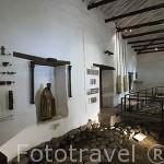Interior. Museo arqueologico de la Merced. (Arte Precolombino). Santiago de CALI. Valle del Cauca. Colombia