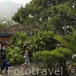 Ecoparque del rio Pance. Alrededores Santiago de CALI. Valle del Cauca. Colombia