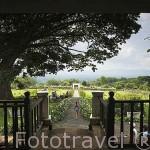 Vista de los jardines de la Hacienda El Paraiso. Mansion colonial donde vivio Jorge Isaac. Valle del Cauca. Colombia