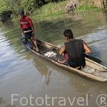 Pescadores en el canal que une la cienaga de Pijiño con el rio Magdalena. MOMPOX. Colombia. Suramerica