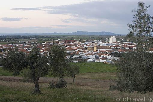 La poblacion de ALCARACEJOS rodeada de olivos desde el cerro de San Sebastian. Gentilicio: Mojinos. Comarca de Los Pedroches. Cordoba. España
