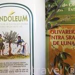 Detalle de unas latas de 5L de aceite de oliva virgen extra y aceite ecologico. Olivarera Ntra. Sra. de Luna. VILLANUEVA DE CORDOBA. Comarca de Los Pedroches. Cordoba. España