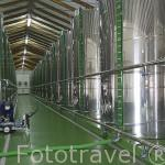 Modernos depositos de aluminio para almacenar aceite de oliva virgen extra ecologico. Olivarera Los Pedroches. POZOBLANCO. Comarca de Los Pedroches. Cordoba. España