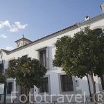 Ayuntamiento y casas en la plaza de POZOBLANCO. Gentilicio: Pozoalbenses. Comarca de Los Pedroches. Cordoba