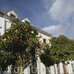 Casas junto a la plaza de POZOBLANCO. Gentilicio: Pozoalbenses. Comarca de Los Pedroches. Cordoba