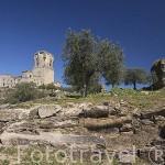 Castillo de Belalcazar. Estilo gotico militar, 1450, sobre antigua fortaleza musulmana, rodeado por el arroyo Caganchas. BELALCAZAR. Comarca de Los Pedroches. Cordoba. España