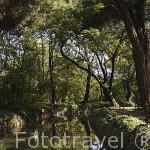 Jardin historico artistico (s. XVIII) El Capricho. Madrid capital. España