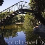 Puente de Hierro y el Lago. Jardin historico artistico (s. XVIII) El Capricho. Madrid capital. España