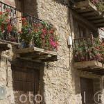 Fachada florida de una casa en el pueblo de TRAMACASTILLA. Teruel. España