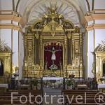 Interior. Ermita del Santisimo Cristo de la Vera Cruz. s.XVIII. Población de CONSUEGRA. Provincia de Toledo. Castilla La Mancha. España - Spain