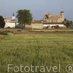 Iglesia y cultivos. Provincia de Toledo.Castilla La Mancha. España. Spain