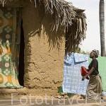 Casas de adobe entre palmerales. Pueblo de GOUMEL WOLOF. Rio Senegal. Norte de Senegal