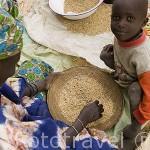 Mujer y niño. Separando el grano. Poblado nomada de GOUMEL PEUL. Rio Senegal. Norte de Senegal